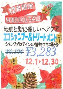 12限定-SPECIAL-SALE